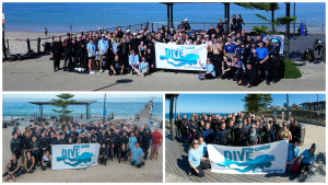 Dive For Cancer 2014 2015 2016