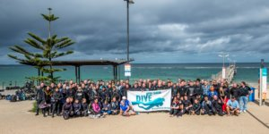 Dive For Cancer 2018